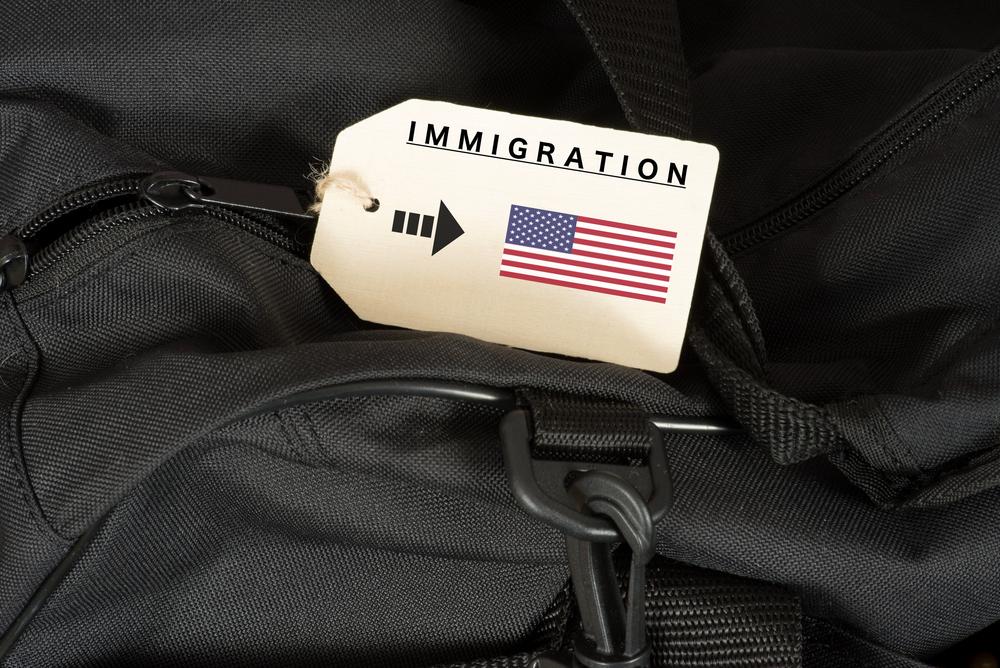 Immigation law