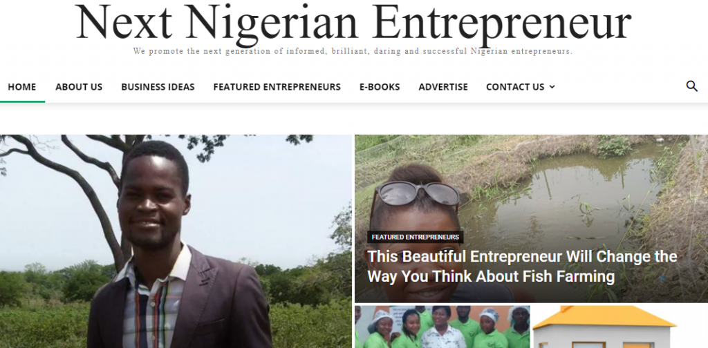 Next Nigerian Entrepreneur